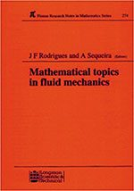 Mathematical Topics in Fluid Mechanics